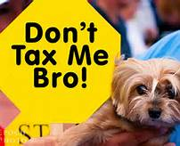 don't tax me bro